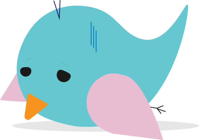落ち込んでいる青い鳥