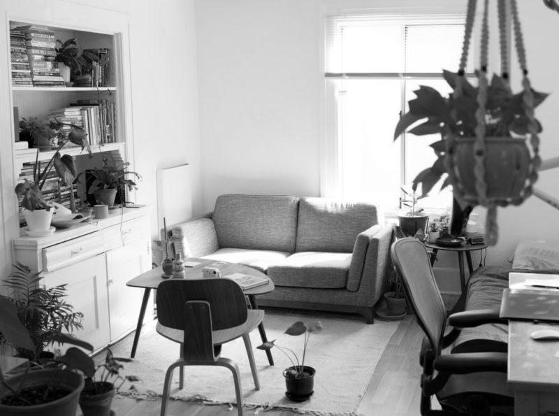 TOEIC Part1|植物が飾られた部屋の写真